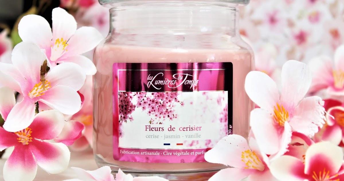 temps fleurs de cerisier avis