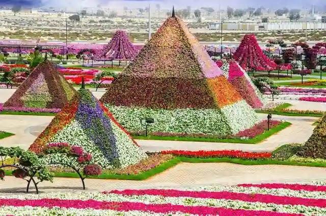 أجمل المباني من الزهور في حديقة الزهور في دبي