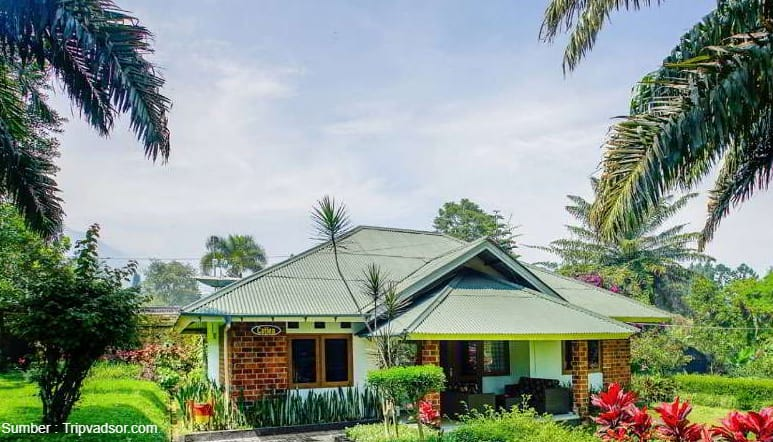 Terrace Villa Golf