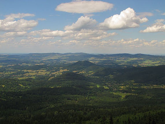 Góry Sokole (Fischbacher Forst)
