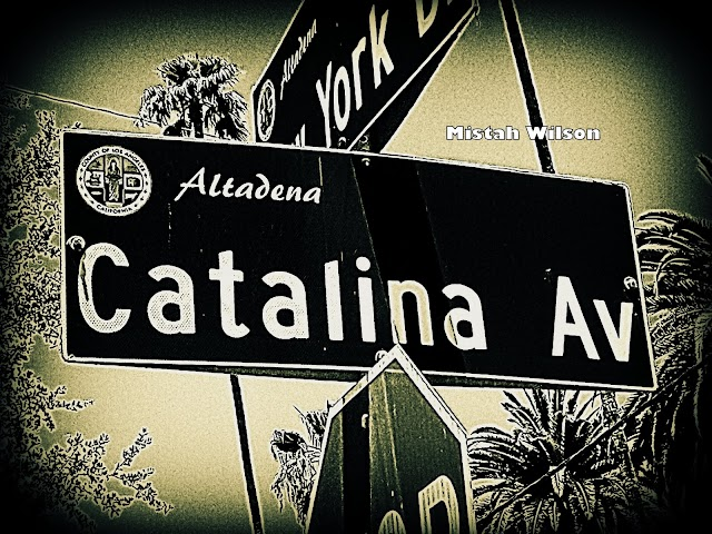 Catalina Avenue, Altadena, California by Mistah Wilson
