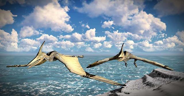 Le opere d'arte sulle ciotole di Tami in Nuova Guinea potrebbero essere state ispirate dagli avvistamenti di pterodattilo moderno?