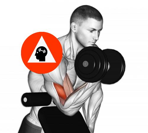 musculation à domicile curl biceps concentré haltère sur bans incliné
