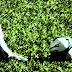 Governo do Rio prevê volta do futebol com 50% de torcedores
