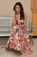Actress Richa Panai Pos in Sleeveless Floral Long Dress at Rakshaka Batudu Movie Pre Release Function  0142.JPG