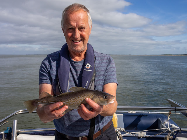 Photo of the first codling of the day, which was just too small to keep