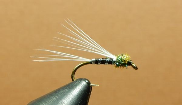 Fly Tying Dubbing for dry flies WHOLE Muskrat fur Fly Tying Fur from Muskrat