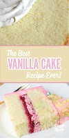 The Best Vanilla Cake Recipe (From Scratch) Updated 2019