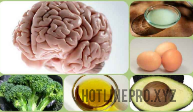 Some foods to boost brain and memory