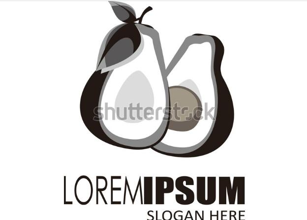illustration vector avocado