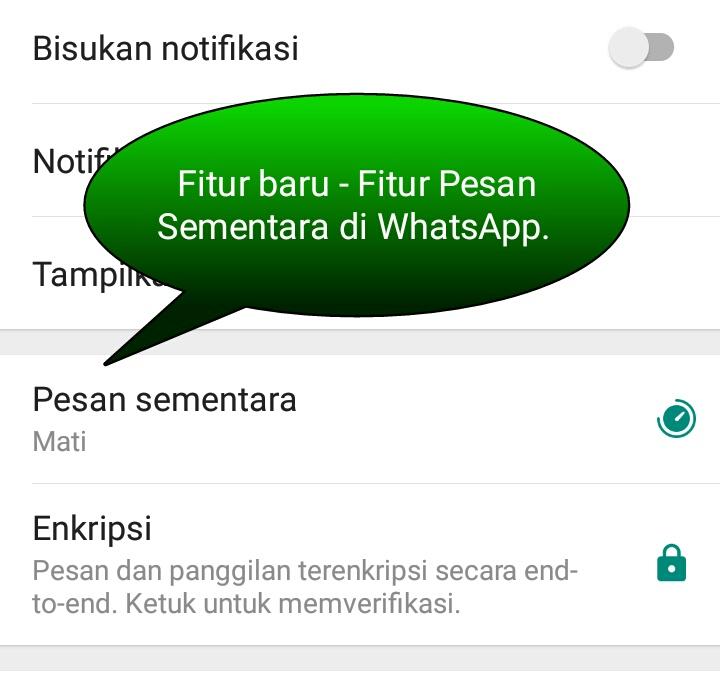 Fitur-Pesan-Sementara-di-WhatsApp