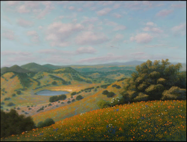Atascadero,central coast,CA,California,landscape,flowers,wildflowers,rolling hills,green,lake,pond,grass