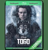 TOGO (2019) WEB-DL 1080P HD MKV ESPAÑOL LATINO