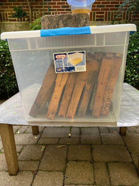 beekeeping,bee,slow cooker,crush and strain,honey,combcapper,escape,wax,
