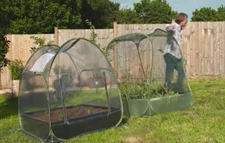 David Domoney planters