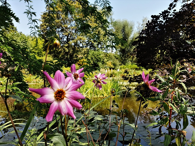 Visiter Giverny - Le village de Claude Monet