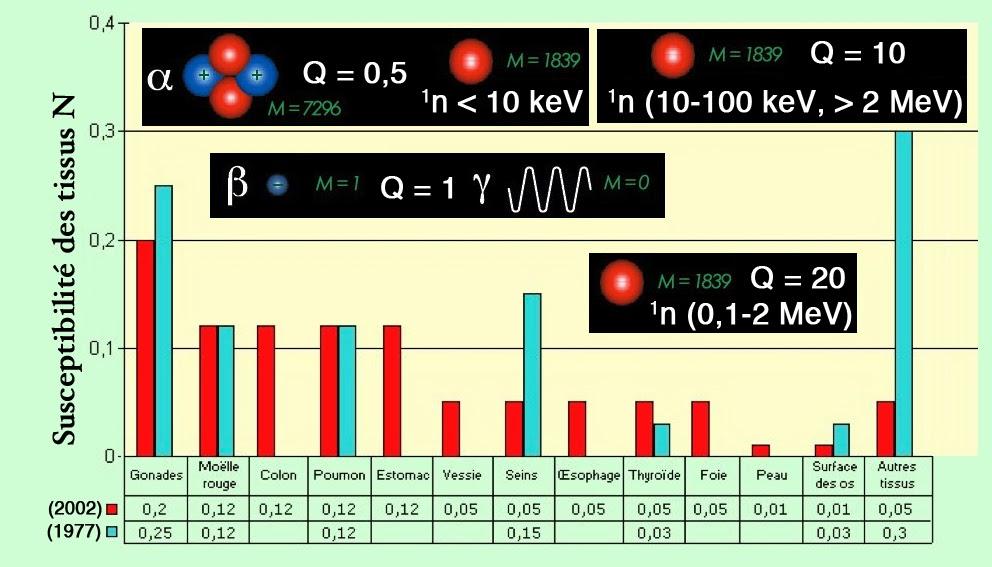 Formule de demi-vie radiométrique datant
