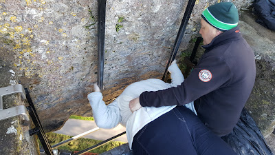 PippaD kissing the Blarney Stone