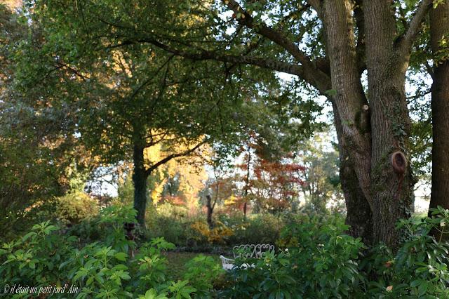 jardin en automne petit jard' Ain