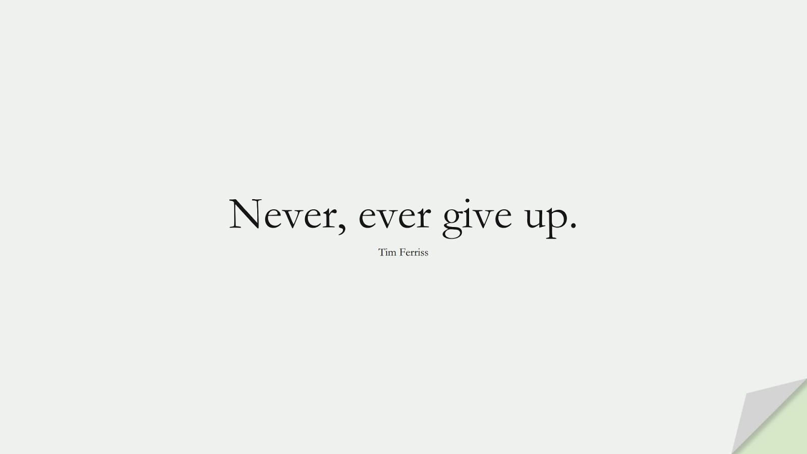 Never, ever give up. (Tim Ferriss);  #TimFerrissQuotes