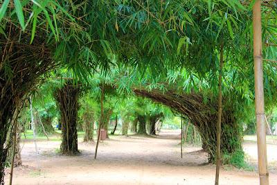 Passeggiate o Li Phi cascate Somphamit