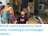 http://sciencythoughts.blogspot.co.uk/2018/02/british-tourist-attacked-by-shark-while.html