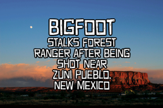zuni mountain bigfoot