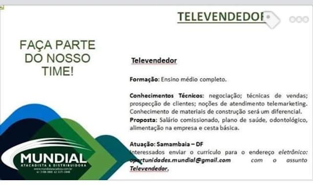Televendedor