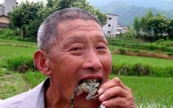 Orang ini Tewas Usai Makan Kodok