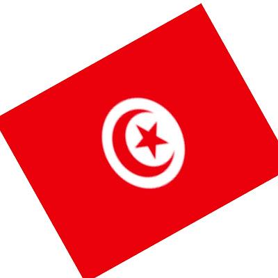 Tunisie : La banque centrale tunisienne serait la première banque centrale à lancer une monnaie numérique dans le monde en 2020