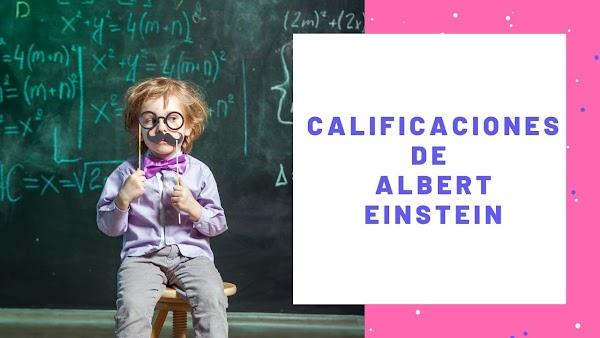 ▷ Boleta de CALIFICACIONES de ALBERT EINSTEIN | 6 = 10