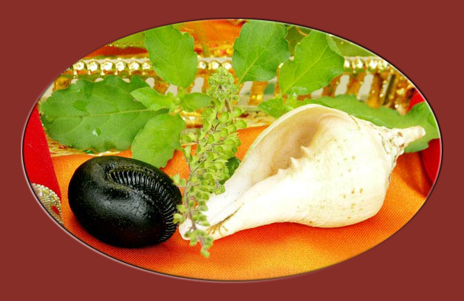 Saligram (Shaligram) is the fossil from Saal trees which abound in the Himalayas