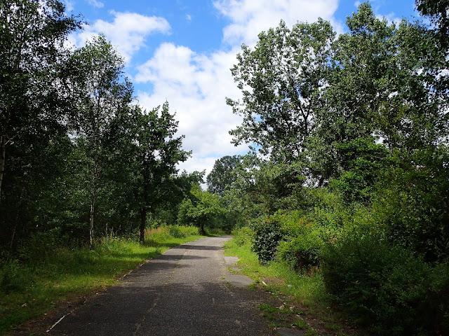 Ścieżka w stronę Nikiszowca