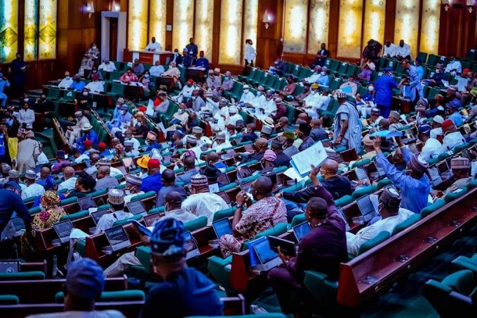 Electoral Act: House Passes Bill, empowers INEC on Manual and Electronic Transmission   CABLE REPORTERS