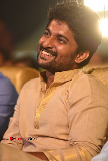 Nenu Local Audio Launch Stills  0034.JPG