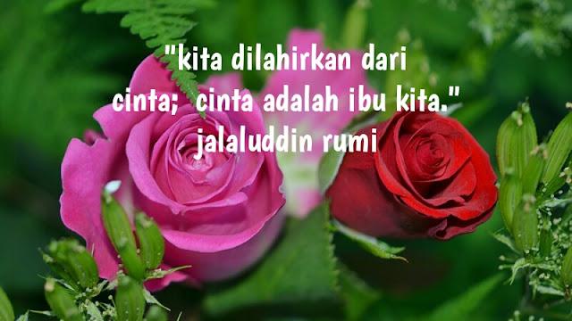 Kata Mutiara Islami Rumi Kutipan Kehidupan, Cinta, Dan Motivasi