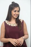 Nikki Galrani in a Brown Shining Sleeveless Gown at Nakshatram music launch ~  Exclusive 087.JPG