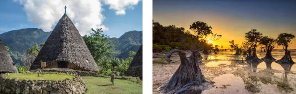 Jenis tari – tarian daerah Nusa Tenggara dan Papua