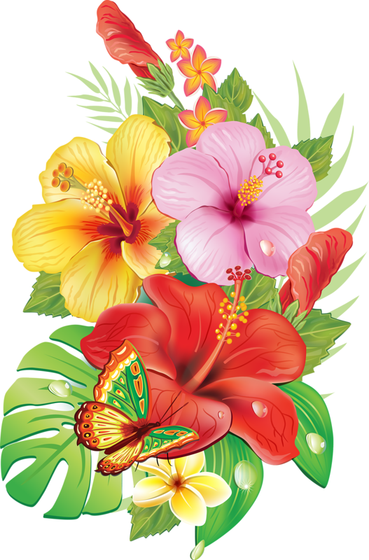 Flower Drawings, continental corner flower, herbaceous Plant, flower Arranging free png