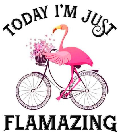 Today I'm going to be flamazing #flamingo #humor