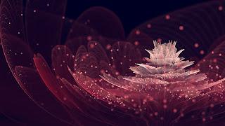 Beautiful-fractals-pattern-flower-abstract-art-design-HD-image-digital-Wallpaper.jpg