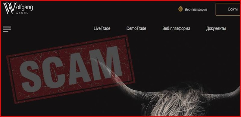 Мошеннический сайт wolfgangsons.com – Отзывы? Брокер Wolfgang & Sons мошенники! Информация