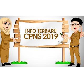 Minus Payakumbuh, Ini Daftar Lengkap Formasi CPNS di Sumbar dan Kementerian