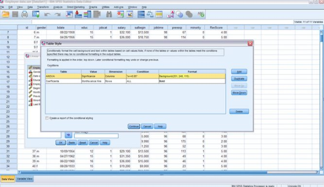 Statistics software for all your business needs