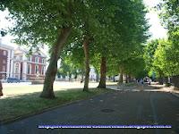 Avenida del parque de Greenwich