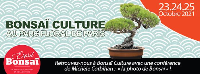 On vous attend les 23-24-25 octobre 2021 à Bonsaï Culture !