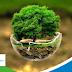 """""""Earth Token"""" Menjaga Alam dengan Investasi Bisnis Berteknologi Blockchain"""