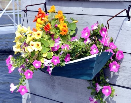 nautical boat wall planter