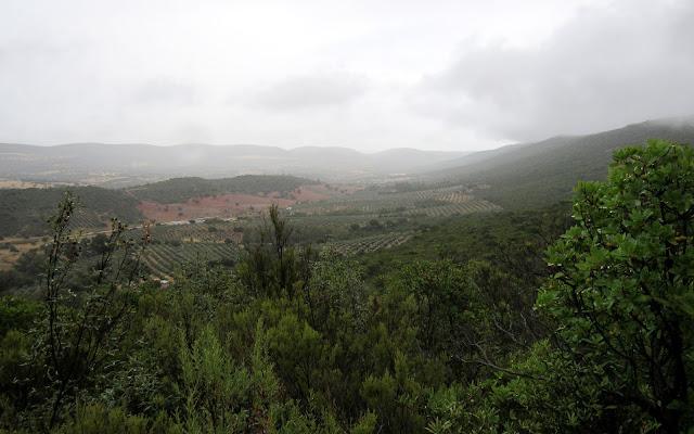 Vistas desde el vértice geodésico de Cabañeros