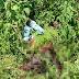 MISTÉRIO: Corpo é encontrado com marcas de tiros em cidade caririzeira